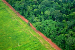 An aerial shot shows the contrast between forest and agricultural landscapes near Rio Branco, Acre, Brazil. (Flickr / Center For International Forestry Research / Kate Evans)