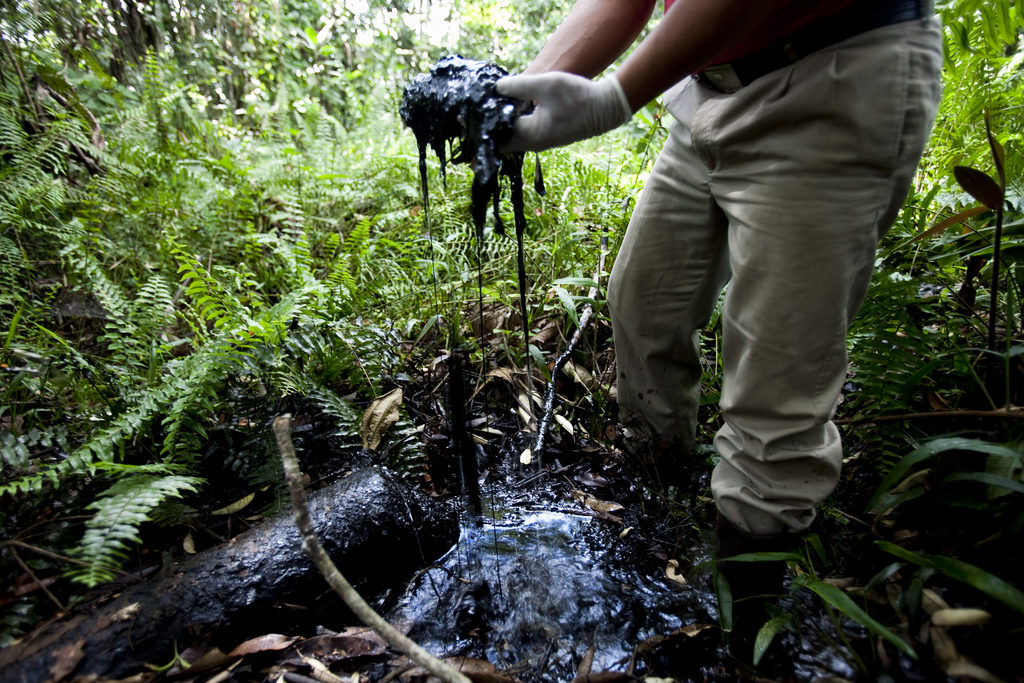Star Witness Admits Lying To Protect Chevron From $9.5B Judgement