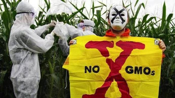 NYT Editors Ignore GMO Health Dangers