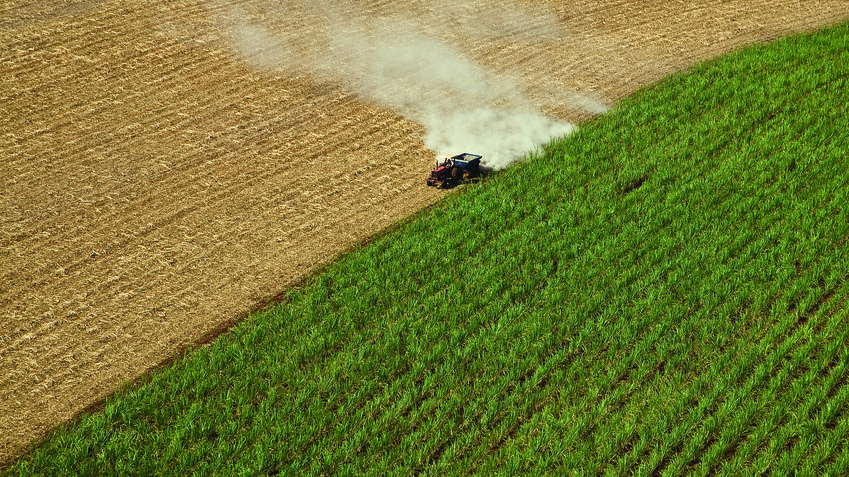 'Development In Reverse': How Sugar Drives Land Conflicts Across The World