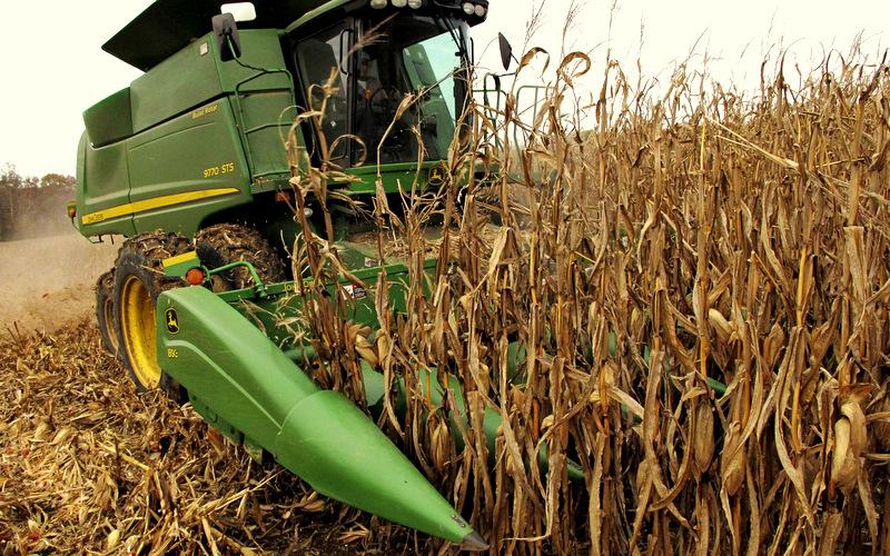 Ethanols Environmental Damage Illinois