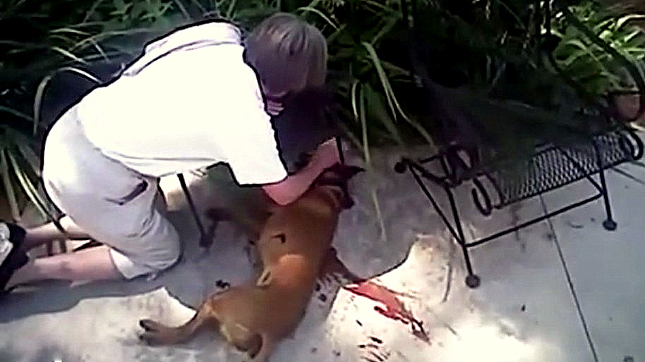 Disturbing Police Bodycam Shows Cop 'Dispatch' Family Dog During Alarm Check