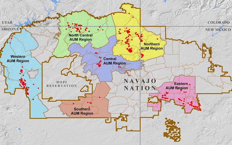 Uranium mining occurred in six major areas of the Navajo Nation, now designated as AUM (abandoned uranium mine) Regions. This map indicates the 521 sites mapped by the EPA, but there are estimated to be hundreds more. (Source: EPA)