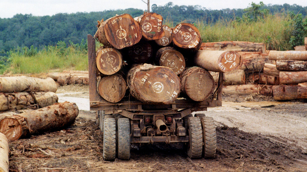 A logging truck departs a forest-logging camp in the Central African Republic. (Photo: JG Collomb/World Resources Institute)