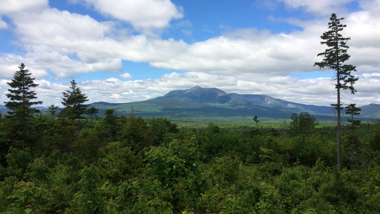 Mount Katahdin, the highest peak in Maine, is visible from some locations within the Katahdin Woods and Waters National Monument. The Katahdin monument is one of the 27 under threat by Trump's executive order. (AP/Patrick Whittle)