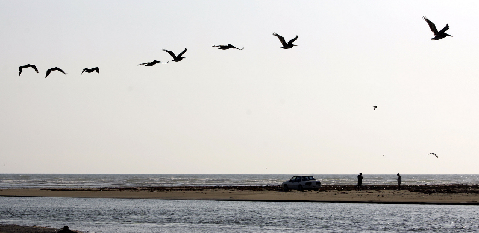 Pelicans pass over Boca Chica, Texas, where the Rio Grande meets the Gulf of Mexico. Wildlife enthusiasts fear the Santa Ana National Wildlife Refuge will be ruined by the fences and adjacent roads the U.S. government plans to erect along the Mexican border to keep out illegal immigrants and smugglers. (AP Photo/Eric Gay)