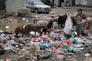 Yemenis forced to choose between treating cholera and eating