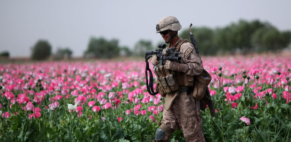 WATCH: Brave Congressman Explains How US Keeps Afghan Heroin Trade Alive at Your Expense