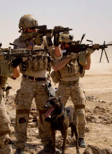 U.S. Navy SEALs pose for a photo. (Photo: DoD/Martine Cuaron)