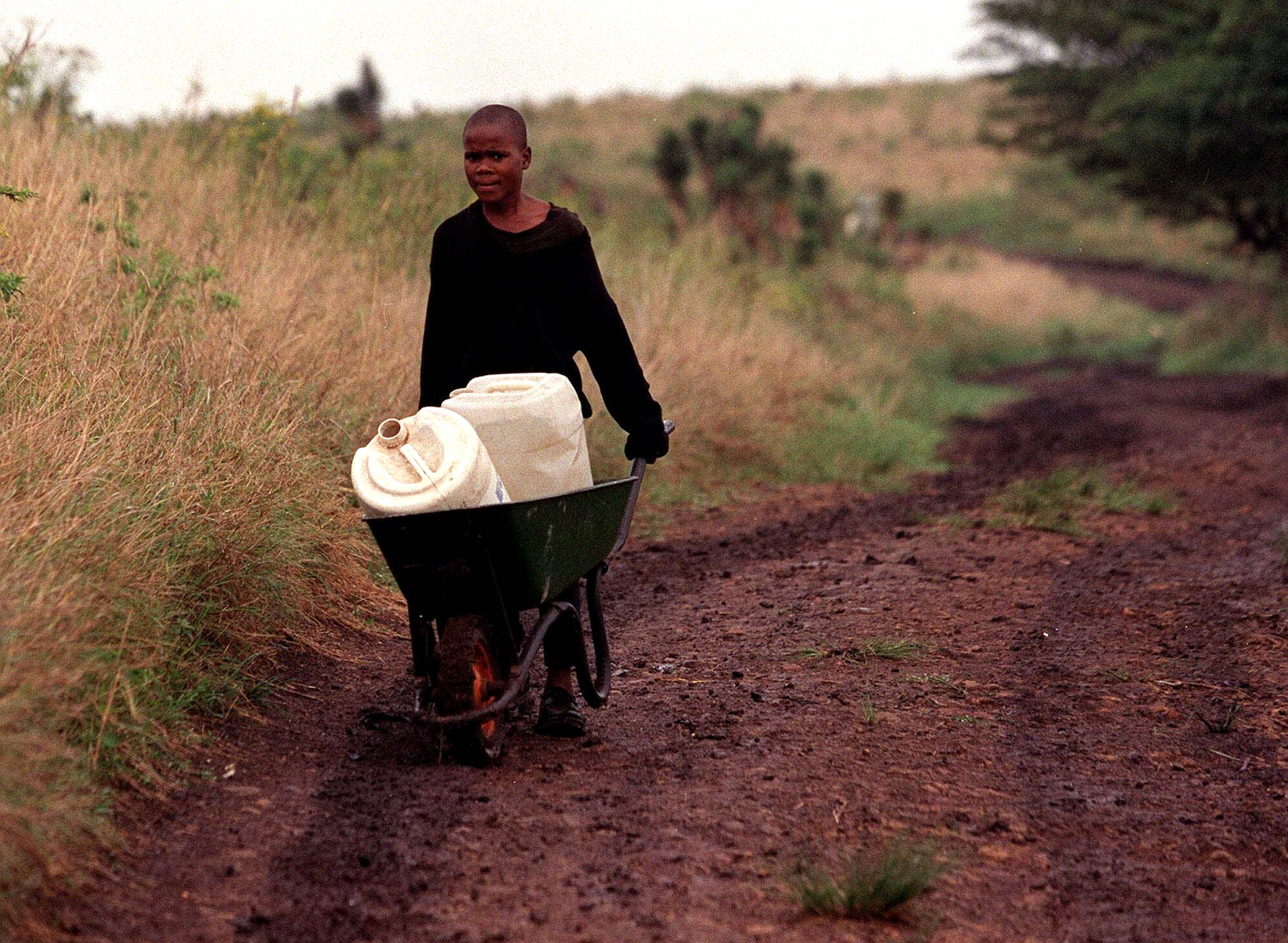 Phakamani Mpanza,14, delivers water to his home from a roadside borehole about 3 kilometres (1.8 miles) away near Empangeni (about 160 kilometres (99 miles) north of Durban, Oct. 27 2000. (AP/ Cobus Bodenstein)