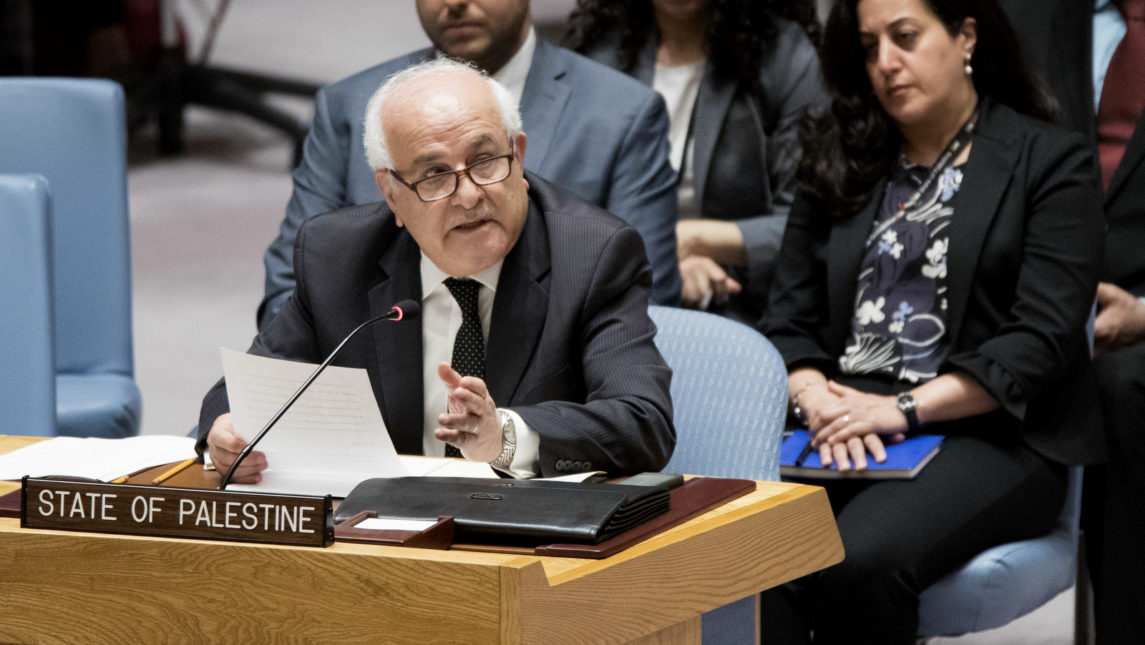 UN Bloc of Developing Nations Elects Palestine as Leader in Snub to Israel, US
