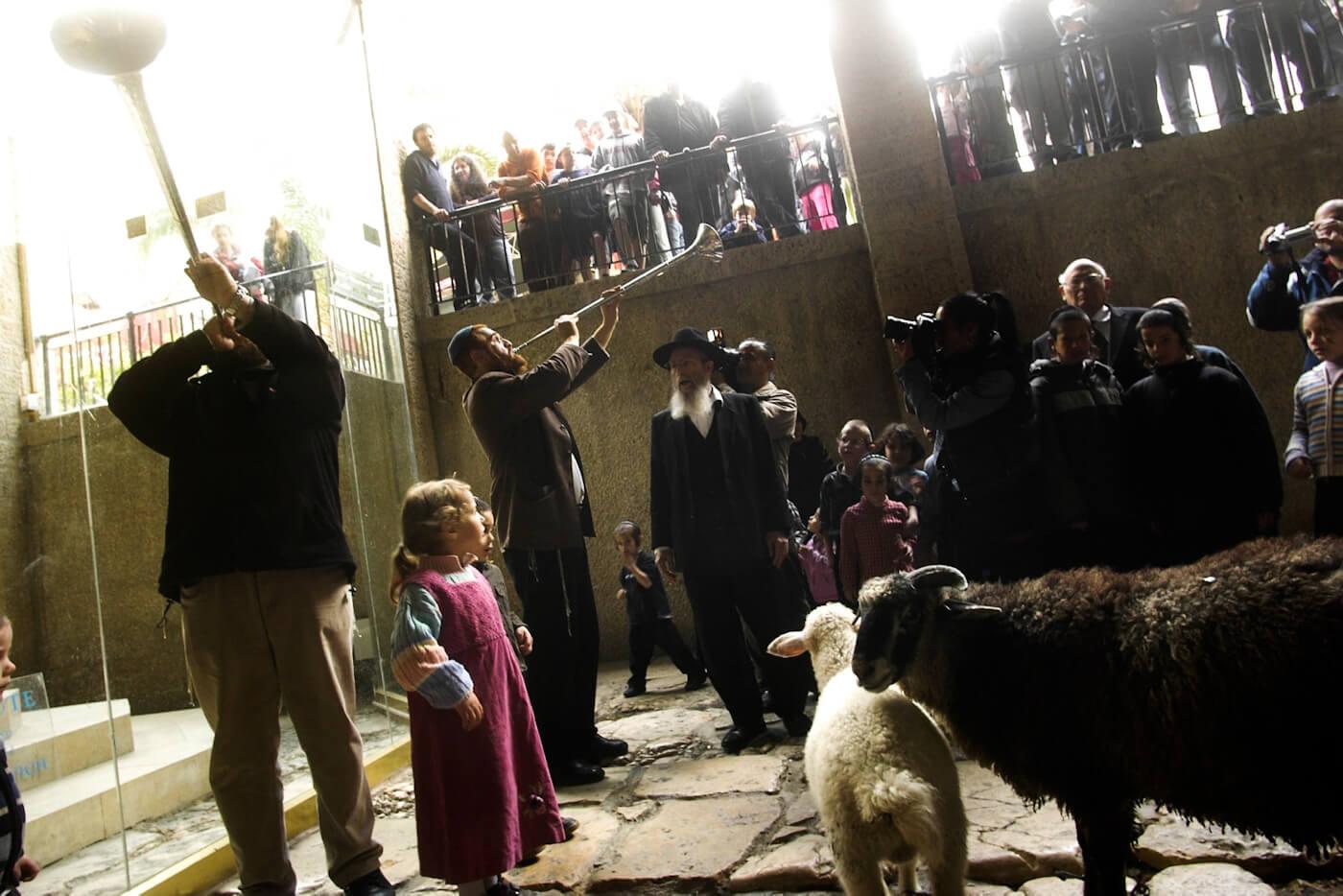 Yisrael Ariel oversees a Temple Mount Faithful enactment of rituals for a rebuilt Third Temple. Tomer Appelbaum | Haaretz